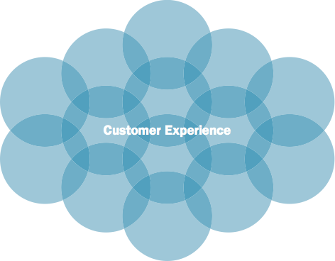 Diagram showing that customer experience is an example of a functional unit within an organization.