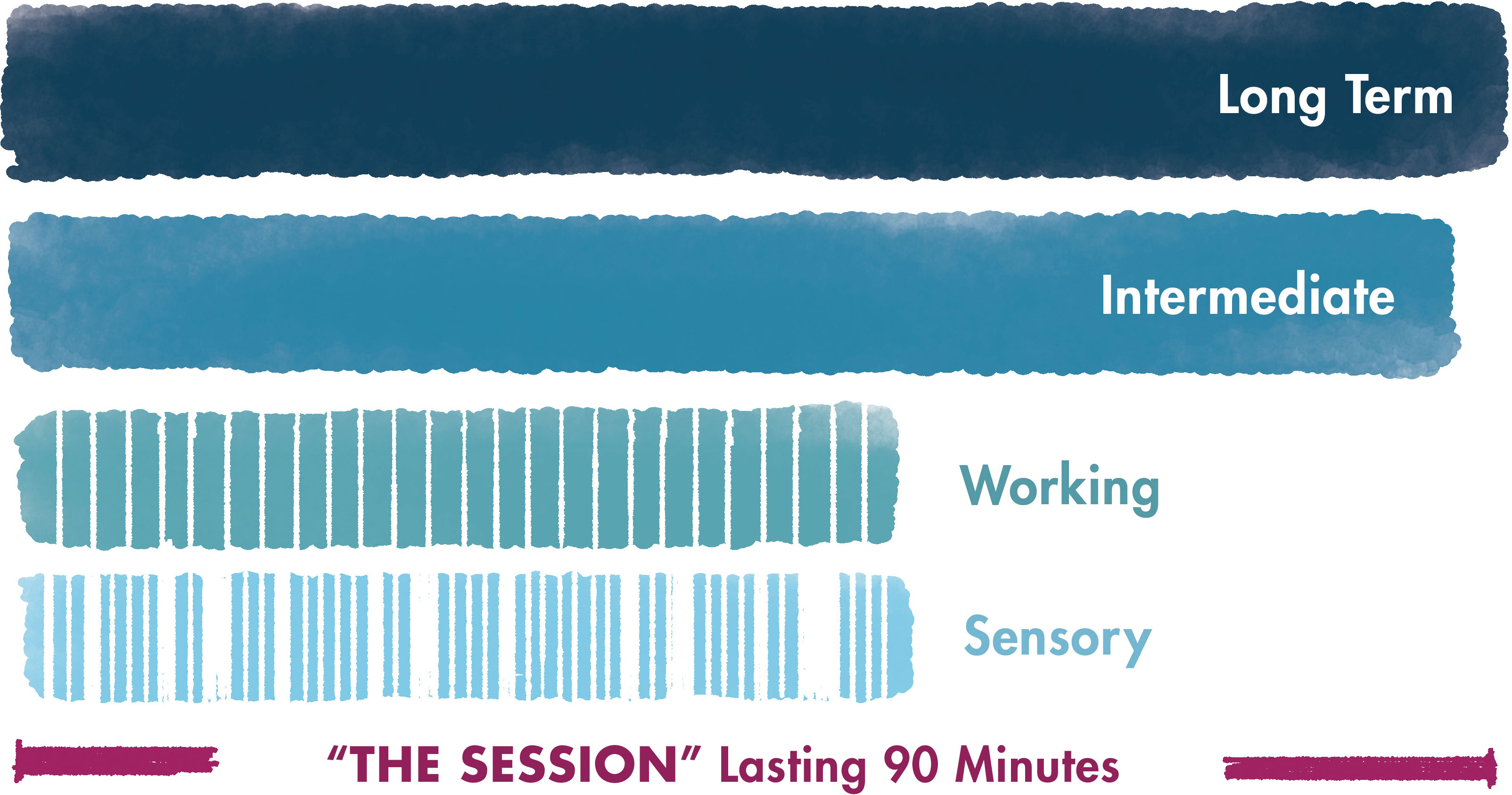 A chart showing how the different types of memory work over a 90-minute meeting