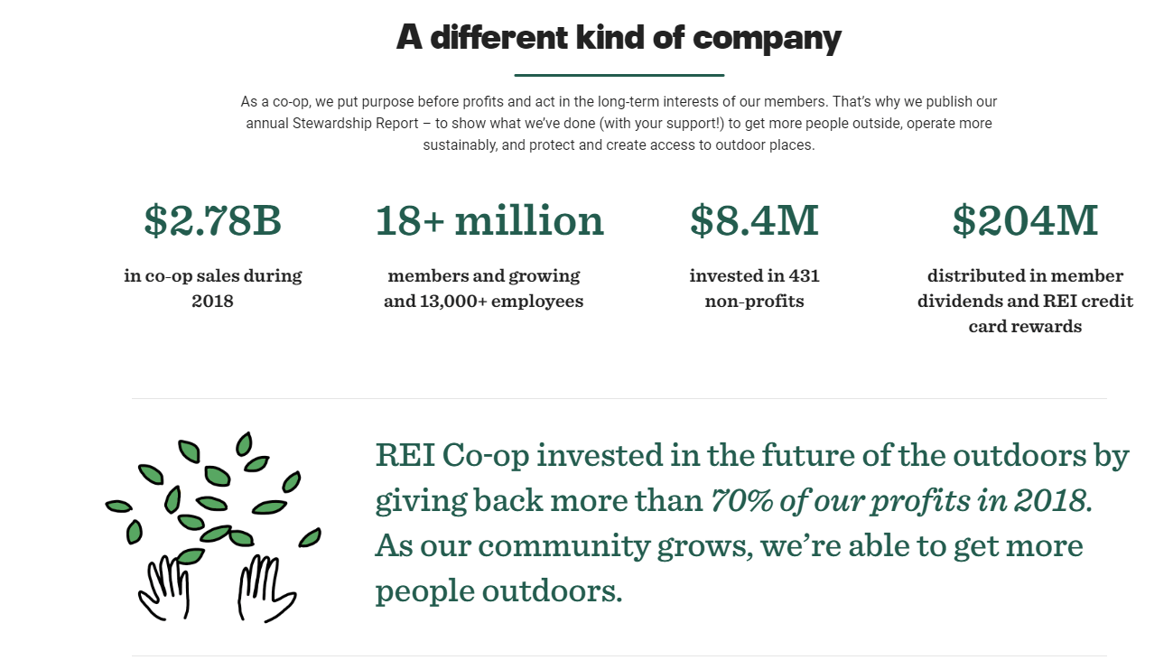 Screenshot of REI's stewardship report
