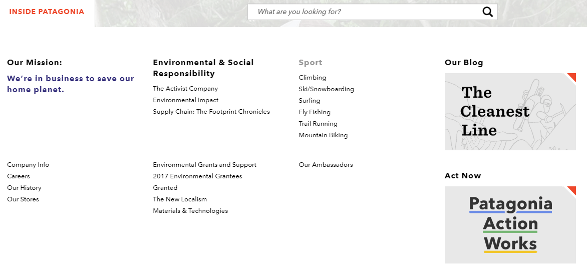Screenshot of Patagonia's page on environmental responsibility