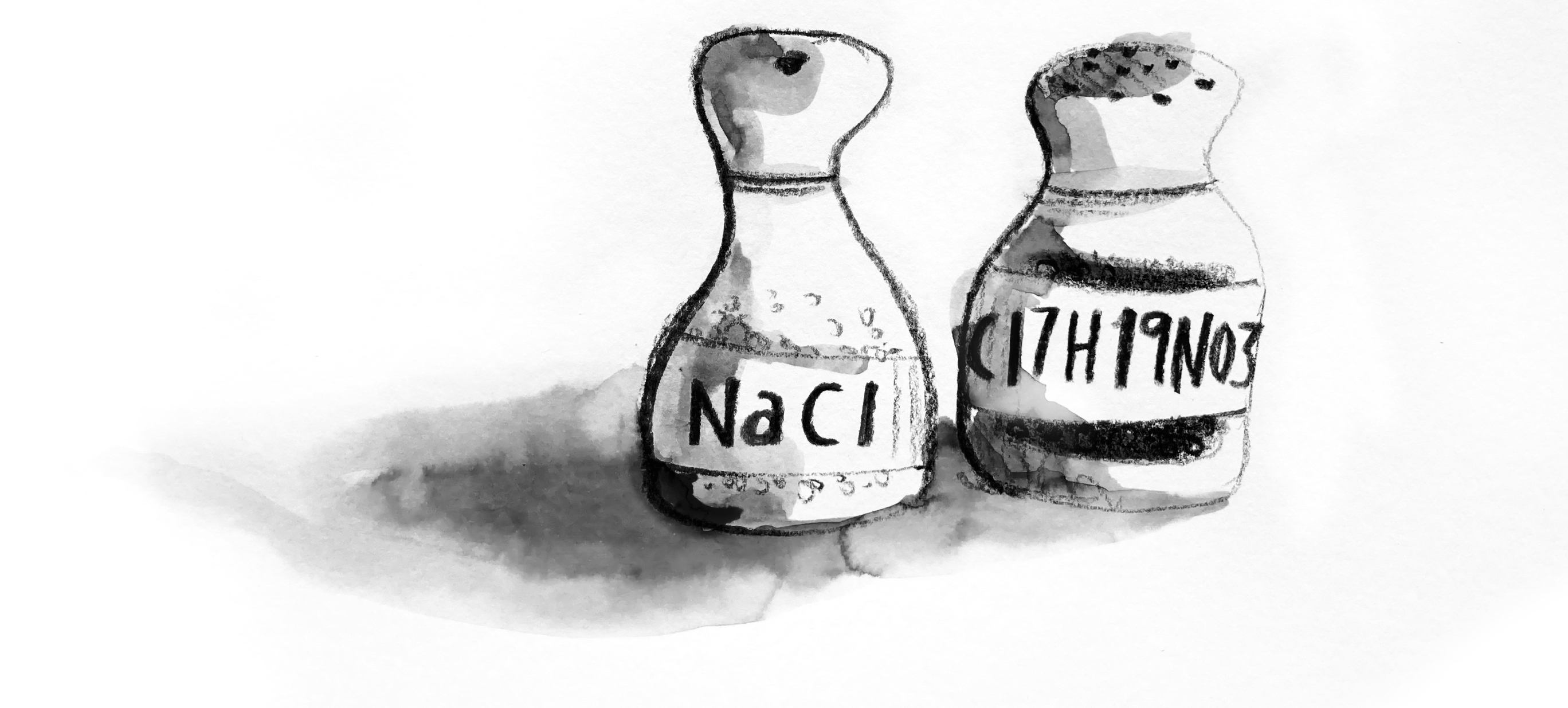 Illustration of a salt and pepper shaker with the chemical names on the shakers.